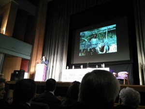 XVI Encuentro Jaen 2017 (9)